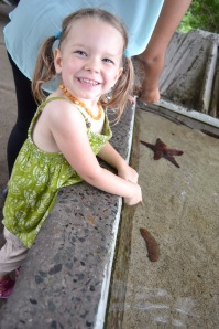 Olivia's favorite were the sea cucumbers