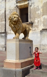 Olivia loved the lion