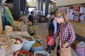 Perusing the market