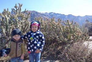 The kids with cactus