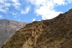 The Ollantaytambo Ruins